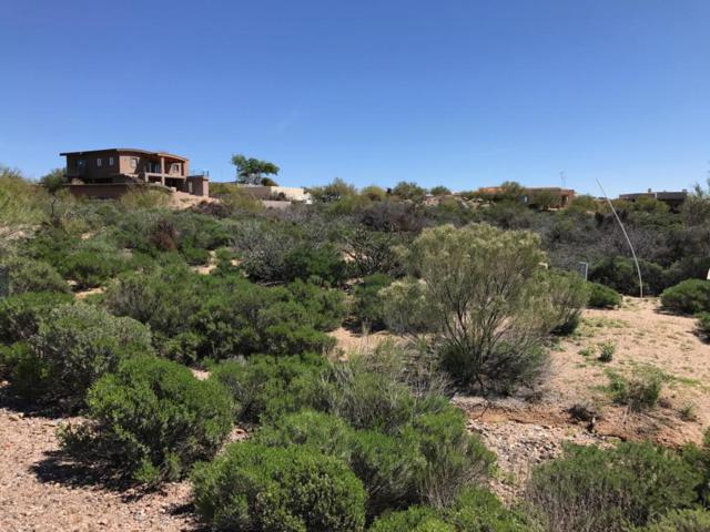 39215 N Cave Creek Road, Scottsdale, AZ 85262 (MLS #5825286) :: Brett Tanner Home Selling Team