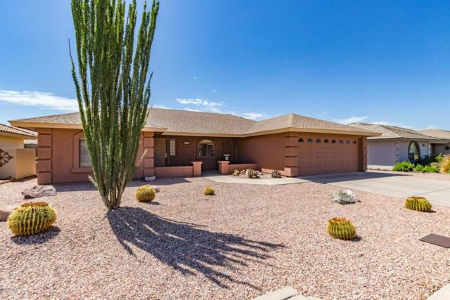 11353 E Nido Avenue, Mesa, AZ 85209 (MLS #5825328) :: The Garcia Group @ My Home Group