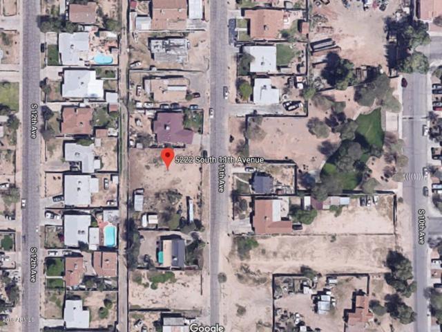 5222 S 11TH Avenue, Phoenix, AZ 85041 (MLS #5825425) :: Lifestyle Partners Team