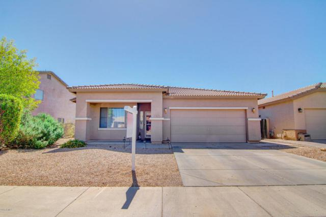 14835 W Windrose Drive, Surprise, AZ 85379 (MLS #5825615) :: The Garcia Group