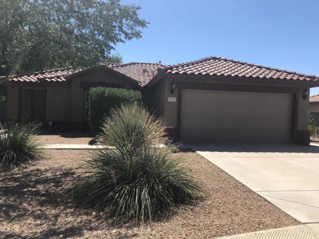 2151 E Flintlock Way, Chandler, AZ 85286 (MLS #5825652) :: Lifestyle Partners Team