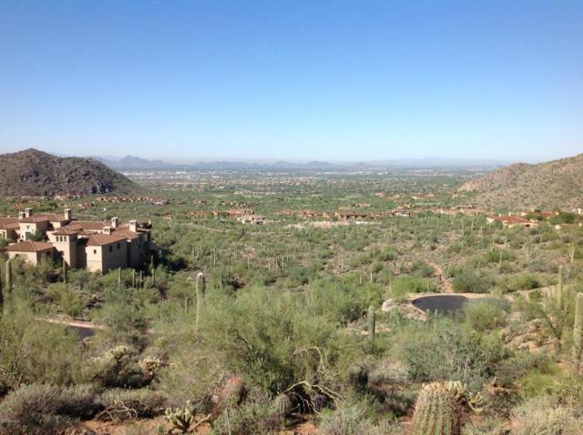 21113 N 112TH Street, Scottsdale, AZ 85255 (MLS #5825721) :: RE/MAX Excalibur