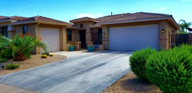 16147 W Glenrosa Avenue, Goodyear, AZ 85395 (MLS #5825818) :: The W Group