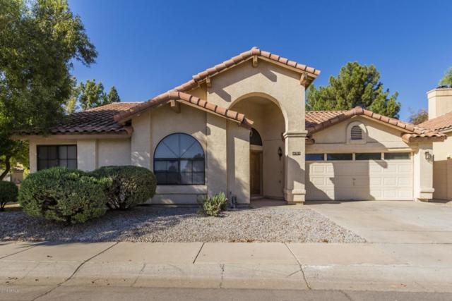 10728 W Ivory Lane, Avondale, AZ 85392 (MLS #5825820) :: The AZ Performance Realty Team