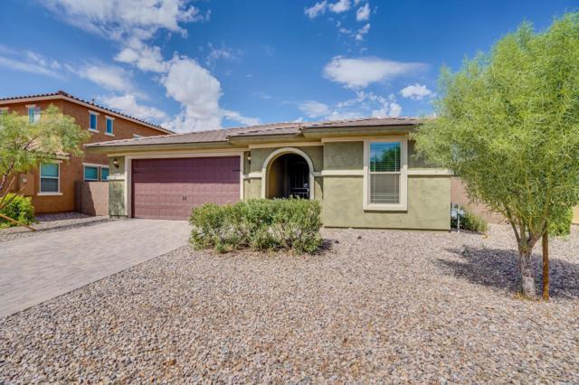 2672 E Daniel Drive, Gilbert, AZ 85298 (MLS #5825942) :: Kepple Real Estate Group