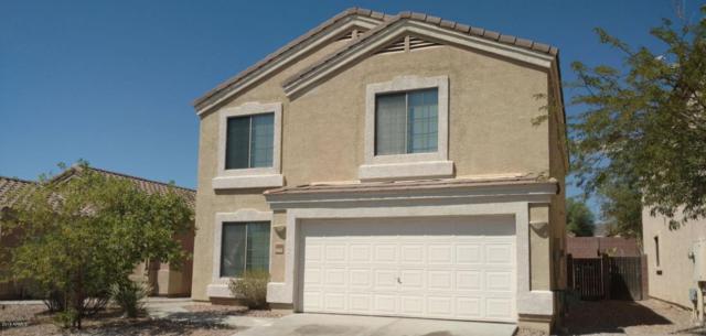 23958 W Antelope Trail, Buckeye, AZ 85326 (MLS #5825984) :: Yost Realty Group at RE/MAX Casa Grande