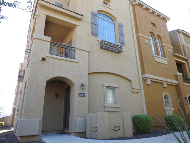900 S 94TH Street #1046, Chandler, AZ 85224 (MLS #5826047) :: Riddle Realty