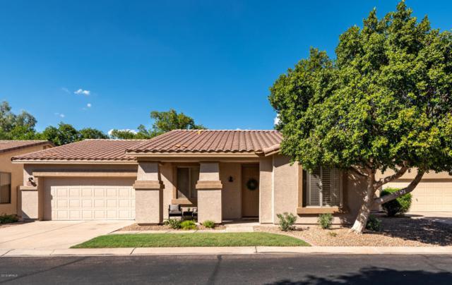 6962 E Kiva Avenue, Mesa, AZ 85209 (MLS #5826063) :: The Garcia Group @ My Home Group