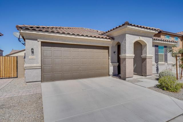 17238 W Salome Street, Goodyear, AZ 85338 (MLS #5826178) :: Lifestyle Partners Team