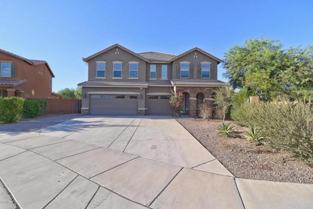 17026 W Hilton Avenue, Goodyear, AZ 85338 (MLS #5826279) :: The Everest Team at My Home Group