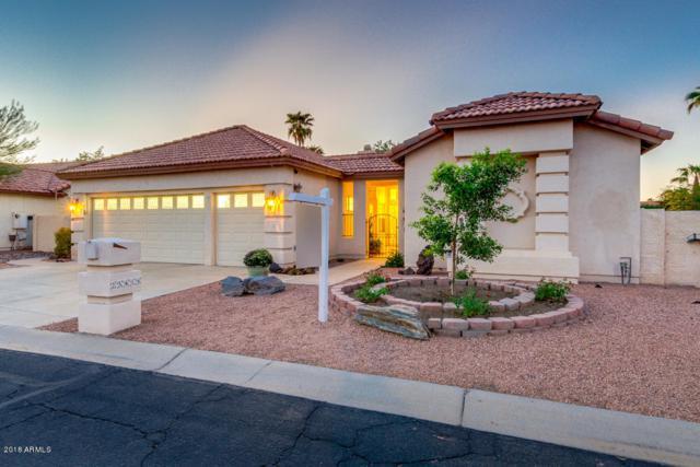 25418 S Spring Creek Road, Sun Lakes, AZ 85248 (MLS #5826317) :: The Garcia Group @ My Home Group