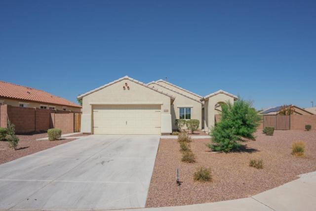 18588 W Fulton Street, Goodyear, AZ 85338 (MLS #5826346) :: Kortright Group - West USA Realty