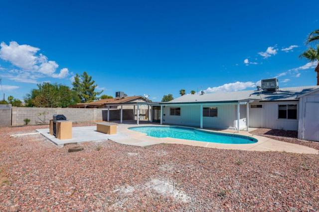 14010 N 40TH Place, Phoenix, AZ 85032 (MLS #5826432) :: Occasio Realty