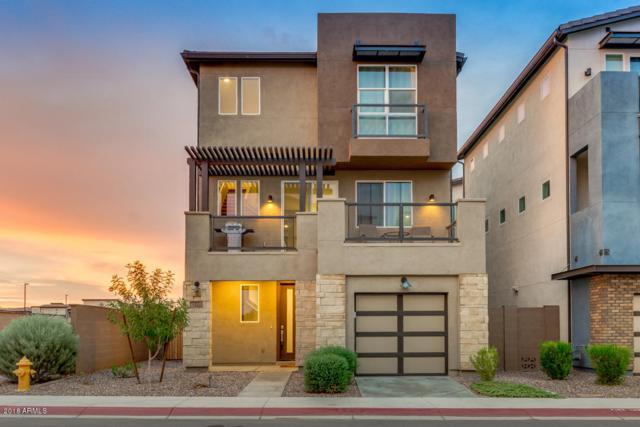 7064 W Stardust Drive, Chandler, AZ 85226 (MLS #5826580) :: The Daniel Montez Real Estate Group