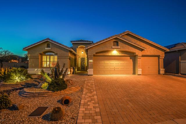 18286 W Continental Parkway, Surprise, AZ 85374 (MLS #5826747) :: Desert Home Premier