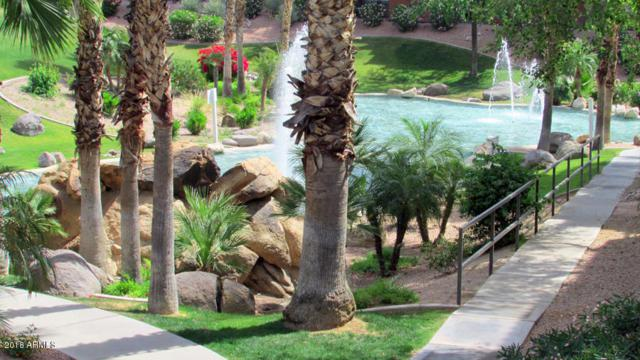 5401 E Van Buren Street #1080, Phoenix, AZ 85008 (MLS #5826855) :: The Wehner Group