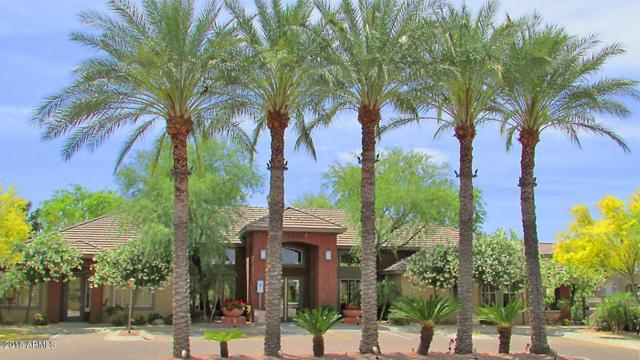 5401 E Van Buren Street #2072, Phoenix, AZ 85008 (MLS #5826879) :: The Wehner Group
