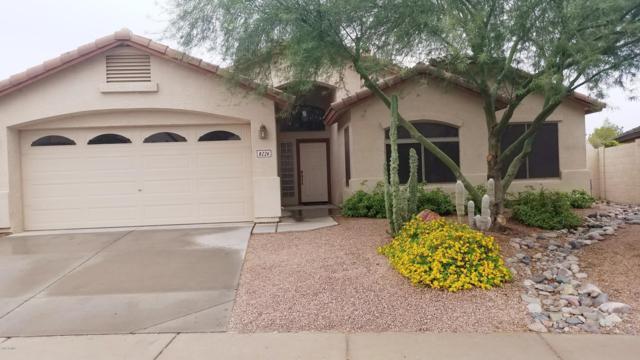 8226 S Jenna Lane, Laveen, AZ 85339 (MLS #5826886) :: The Garcia Group @ My Home Group