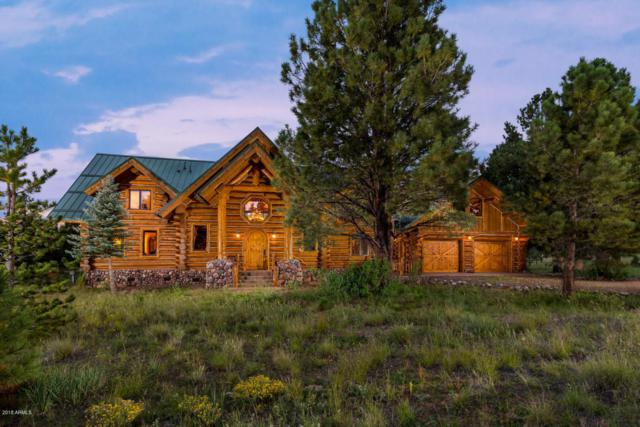 620 N County Road 1325 Road, Greer, AZ 85927 (MLS #5826903) :: The Laughton Team