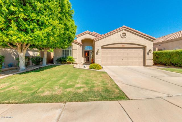 814 W Locust Drive, Chandler, AZ 85248 (MLS #5826971) :: The Everest Team at My Home Group