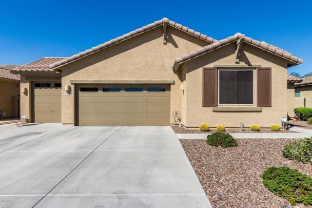 1928 E Dubois Avenue, Gilbert, AZ 85298 (MLS #5827027) :: The W Group