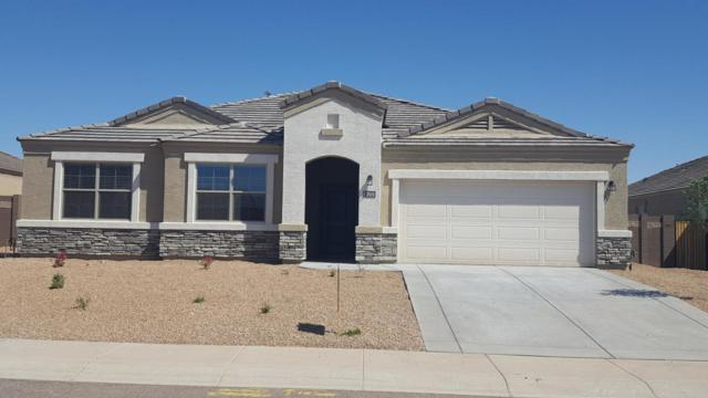 30251 W Fairmount Avenue, Buckeye, AZ 85396 (MLS #5827082) :: The Sweet Group