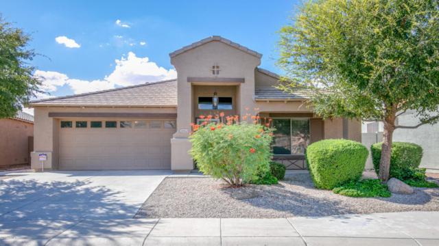 22552 N Vanderveen Way, Maricopa, AZ 85138 (MLS #5827237) :: Yost Realty Group at RE/MAX Casa Grande