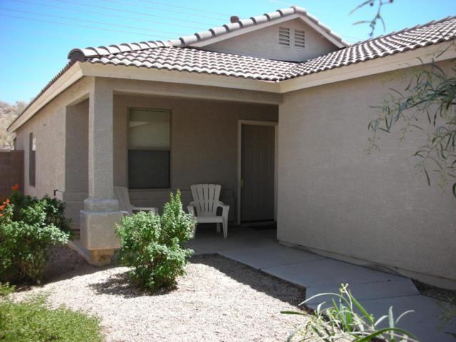 16911 N 113TH Avenue, Surprise, AZ 85378 (MLS #5827261) :: The Garcia Group
