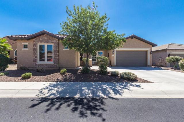 26975 W Mohawk Lane, Buckeye, AZ 85396 (MLS #5827310) :: Desert Home Premier