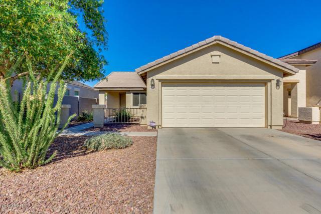 42188 W Noreen Road, Maricopa, AZ 85138 (MLS #5827321) :: Yost Realty Group at RE/MAX Casa Grande