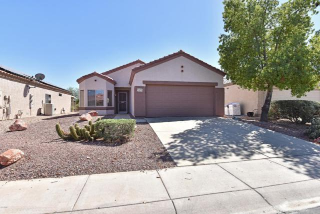 16379 W Rock Springs Lane, Surprise, AZ 85374 (MLS #5827379) :: The Everest Team at My Home Group