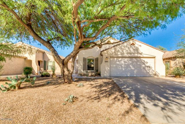 43916 W Cowpath Road, Maricopa, AZ 85138 (MLS #5827437) :: The Garcia Group