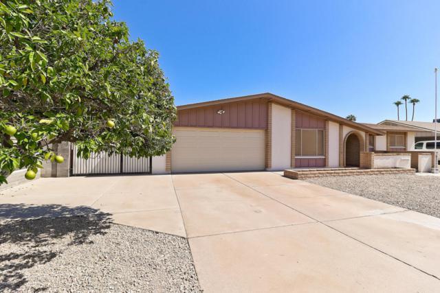 12035 N 49th Avenue, Glendale, AZ 85304 (MLS #5827438) :: The Jesse Herfel Real Estate Group