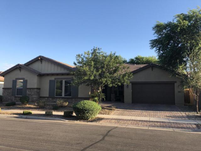 3413 E Megan Street, Gilbert, AZ 85295 (MLS #5827475) :: Lux Home Group at  Keller Williams Realty Phoenix