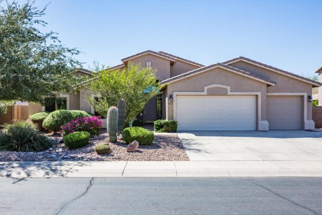 21946 N Balboa Drive, Maricopa, AZ 85138 (MLS #5827477) :: Yost Realty Group at RE/MAX Casa Grande