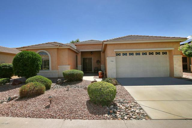 17839 W Sammy Way, Surprise, AZ 85374 (MLS #5827541) :: Desert Home Premier
