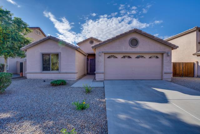 3221 E Denim Trail, San Tan Valley, AZ 85143 (MLS #5827876) :: Yost Realty Group at RE/MAX Casa Grande