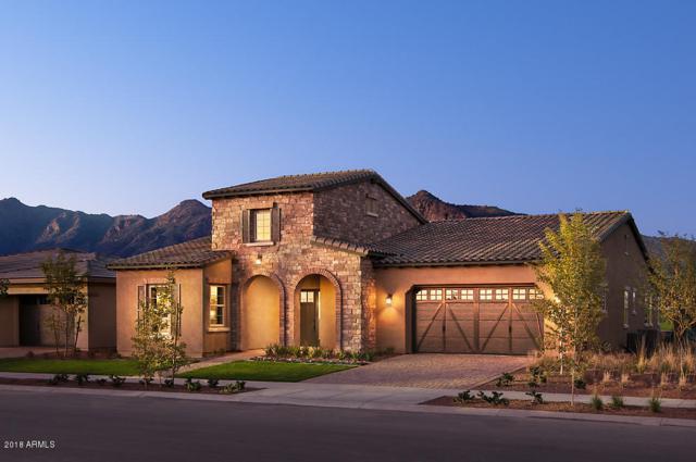 20760 W Pasadena Avenue, Buckeye, AZ 85396 (MLS #5827987) :: Team Wilson Real Estate