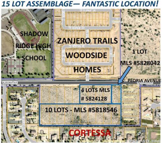 18345 W Peoria Avenue, Waddell, AZ 85355 (MLS #5828042) :: Brett Tanner Home Selling Team