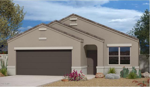 36988 W Maddaloni Avenue, Maricopa, AZ 85138 (MLS #5828047) :: Yost Realty Group at RE/MAX Casa Grande