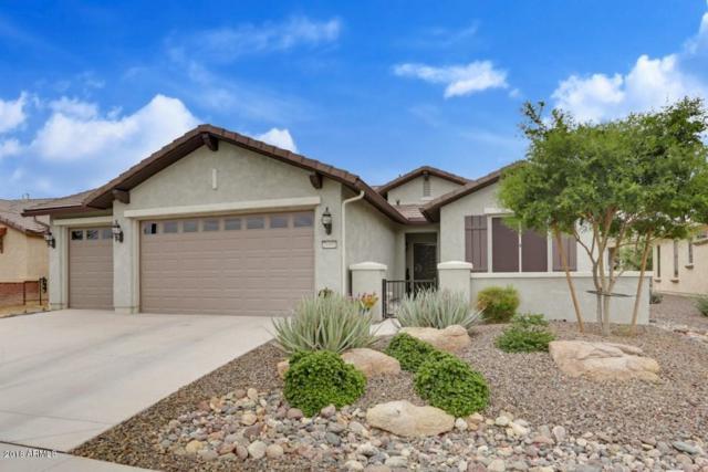 26991 W Sequoia Drive, Buckeye, AZ 85396 (MLS #5828054) :: Desert Home Premier