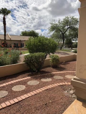 8861 W Piute Avenue, Peoria, AZ 85382 (MLS #5828374) :: The Garcia Group @ My Home Group