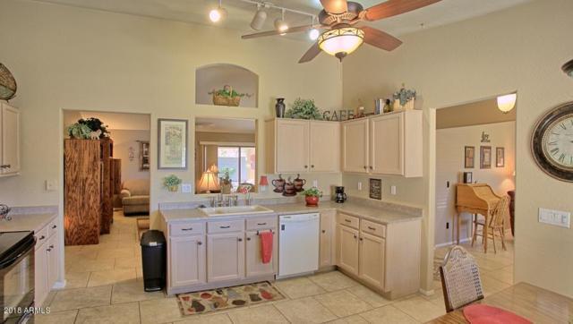 10233 E Dolphin Avenue, Mesa, AZ 85208 (MLS #5828404) :: Team Wilson Real Estate