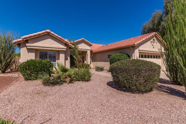 10714 E Halley Drive, Sun Lakes, AZ 85248 (MLS #5828439) :: Yost Realty Group at RE/MAX Casa Grande