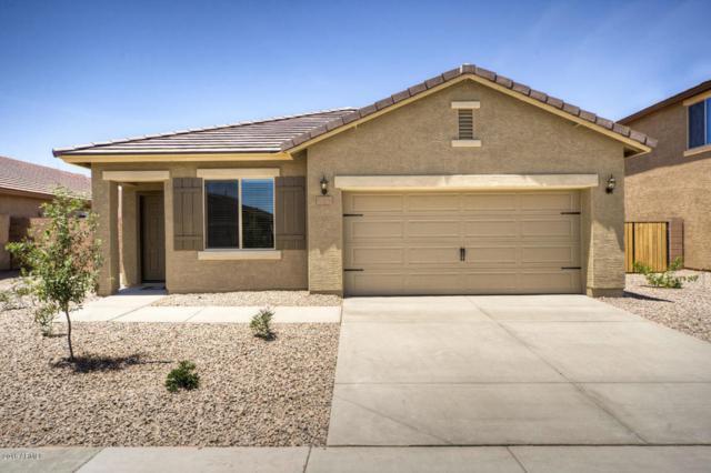 8808 S 253RD Avenue, Buckeye, AZ 85326 (MLS #5828484) :: The Results Group