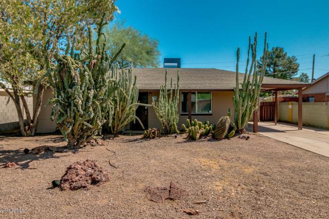 1831 N 43RD Street, Phoenix, AZ 85008 (MLS #5828563) :: CC & Co. Real Estate Team
