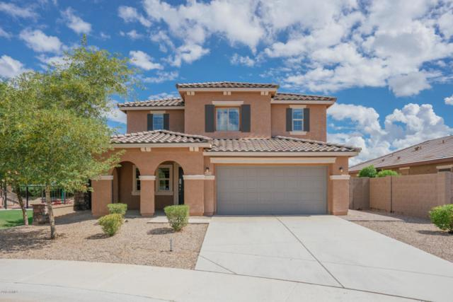 2623 S 172ND Drive, Goodyear, AZ 85338 (MLS #5828657) :: Lifestyle Partners Team