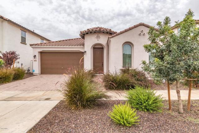 10152 E Tamery Avenue, Mesa, AZ 85212 (MLS #5828691) :: The Jesse Herfel Real Estate Group