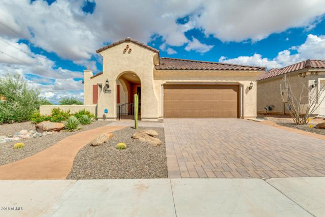 27496 W Mohawk Lane, Buckeye, AZ 85396 (MLS #5828721) :: CC & Co. Real Estate Team