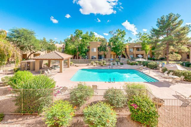 1825 W Ray Road #2060, Chandler, AZ 85224 (MLS #5828873) :: Phoenix Property Group